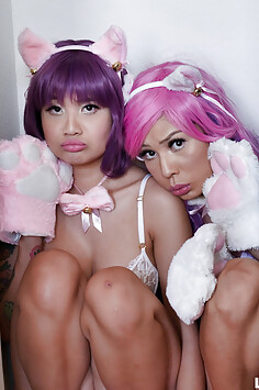 Out of control sexy cosplay cat girls